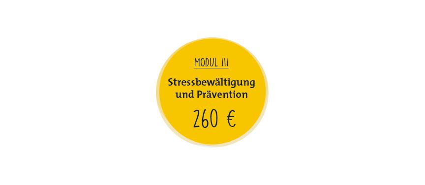 """Kreis mit Aufschrift """"Stressbewältigung und Prävention (260 Euro)"""""""