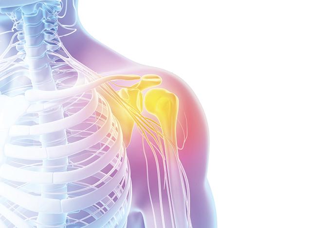 Die Schulter - ein Bewegungswunder - BKK Diakonie