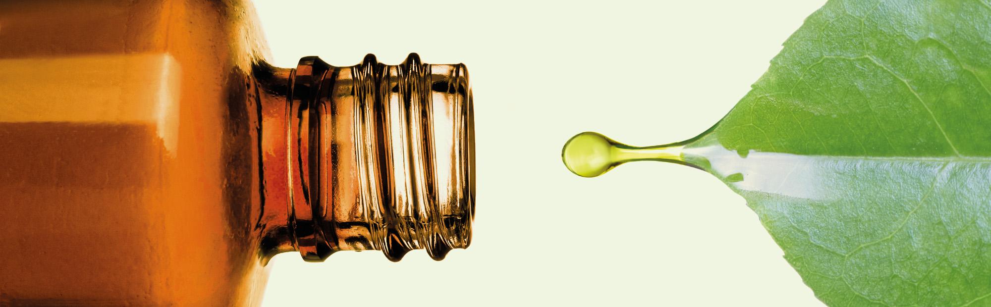 Zu sehen ist die Öffnung einer braunen Glasflasche und ein grünes Blatt, von welchem ein Tropfen in die Flasche tropft.